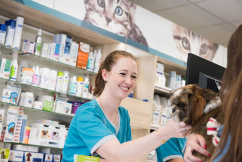 Vétérinaire Tournamy Mougins accueil 2