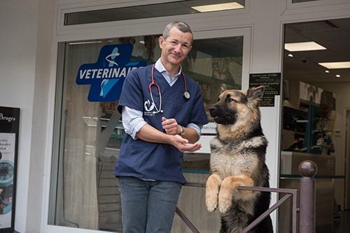 Vétérinaire Tournamy Mougins Dr Auternaud