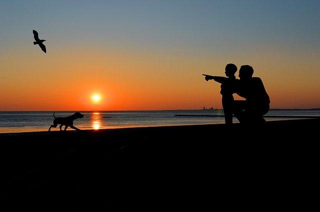 sunset-4546491_640.jpg